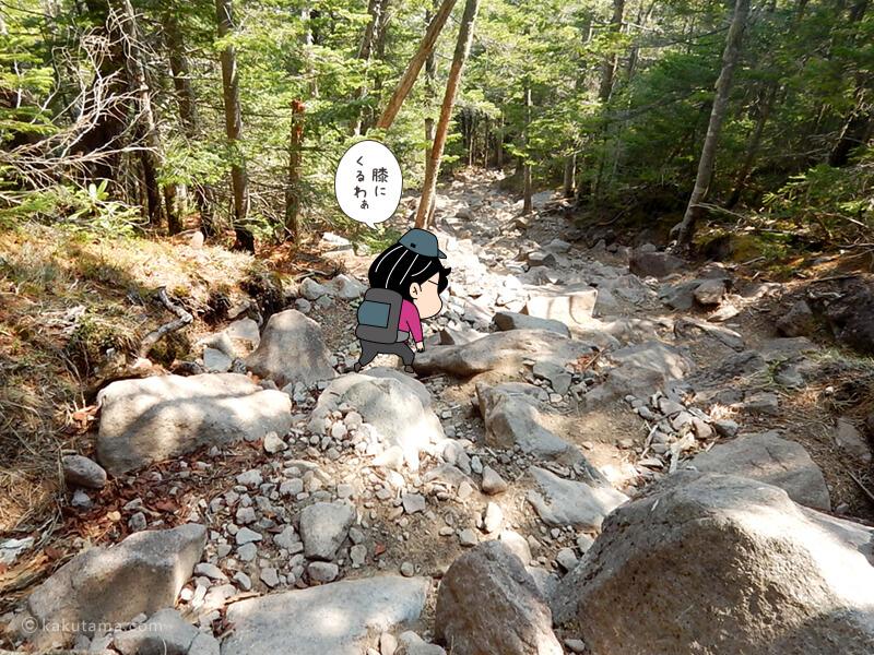 大きい石の下り斜面