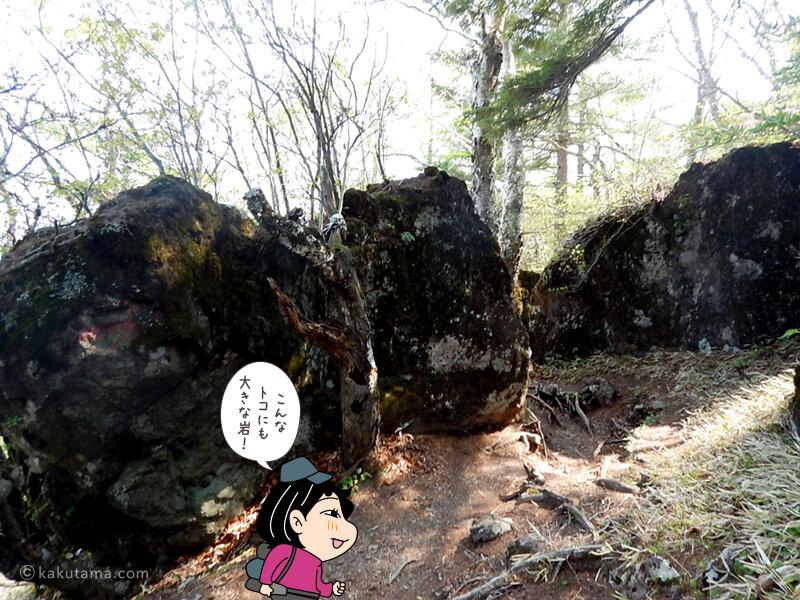 大きい岩がココにも