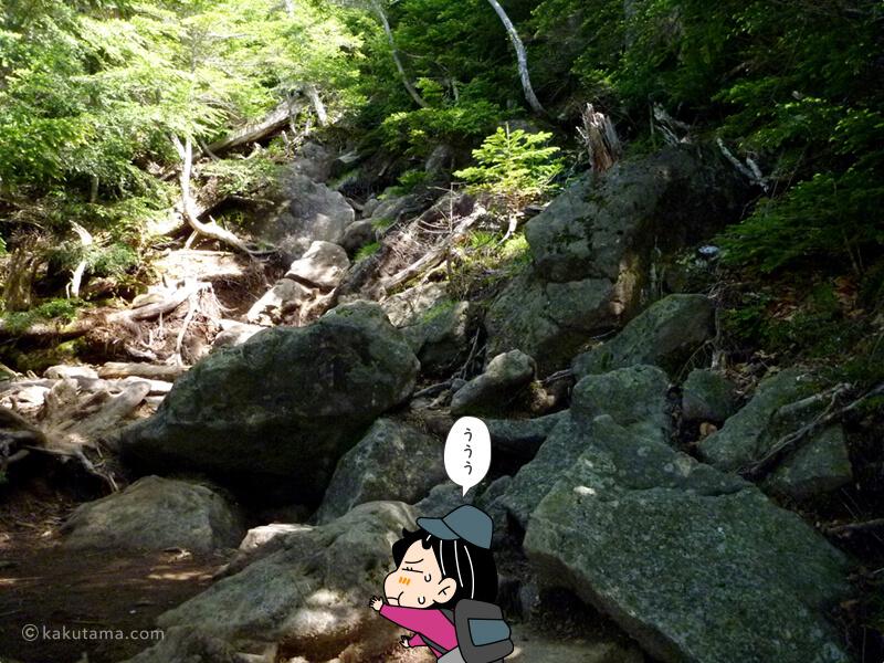 大きい岩場