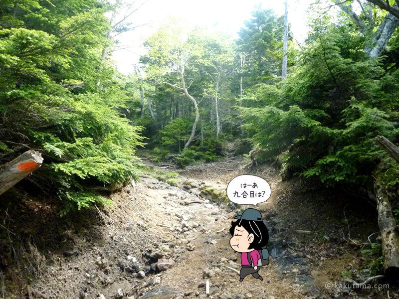 再び坂道2