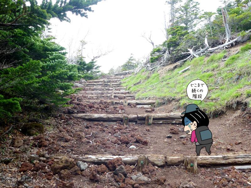 階段を登る1