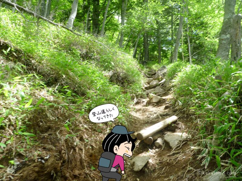 四合目の登山道3