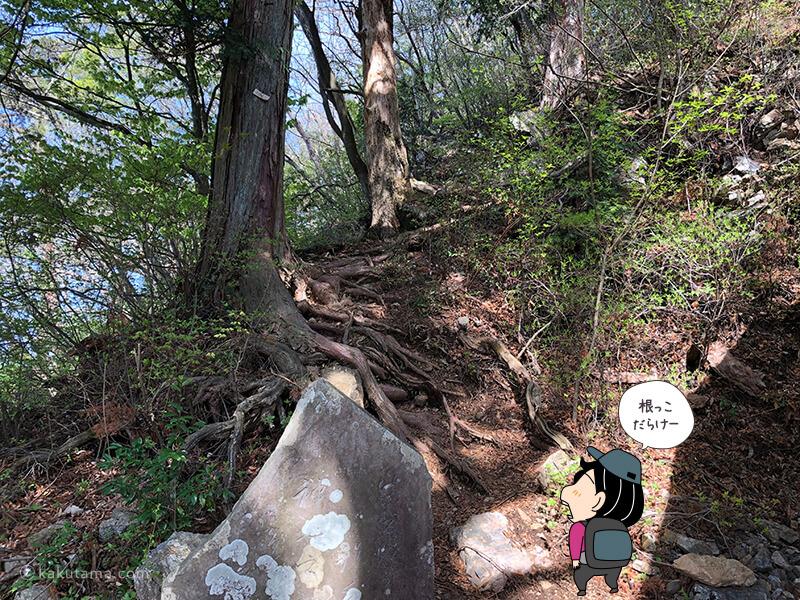 奥ノ院の隣の急斜面を登る2