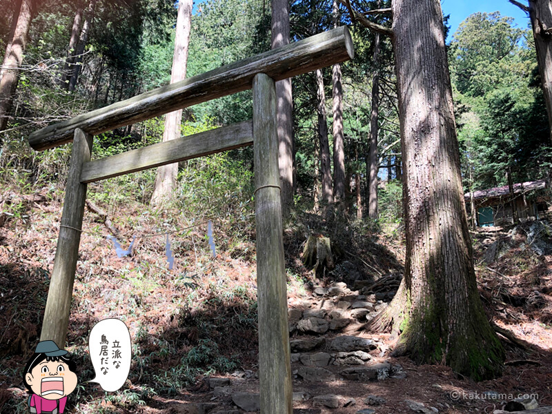 大岳神社の鳥居をくぐる