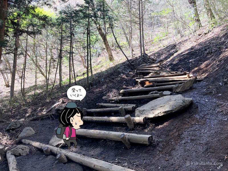 木の階段を上る