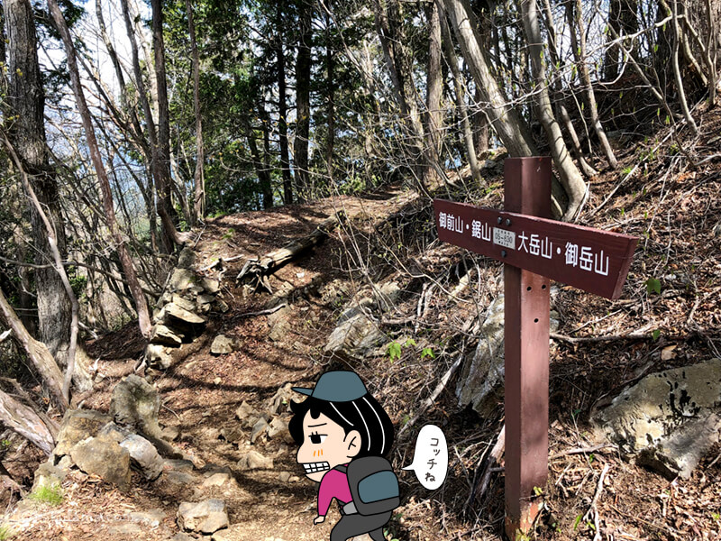 大岳山から鋸山へ向けて歩き出す1