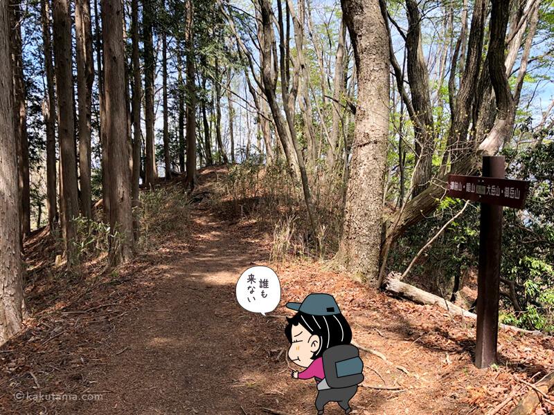 鋸山への登山道3
