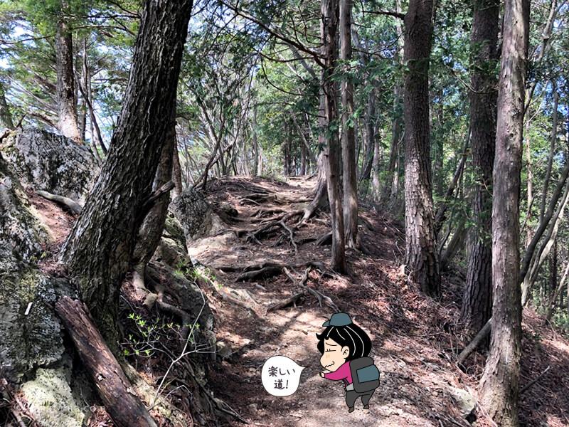 鋸山への登山道5