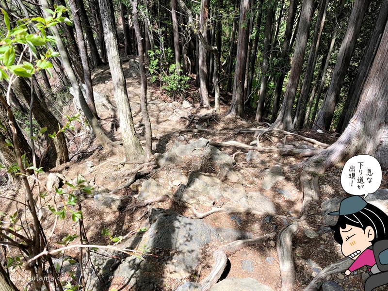 鋸山への登山道6