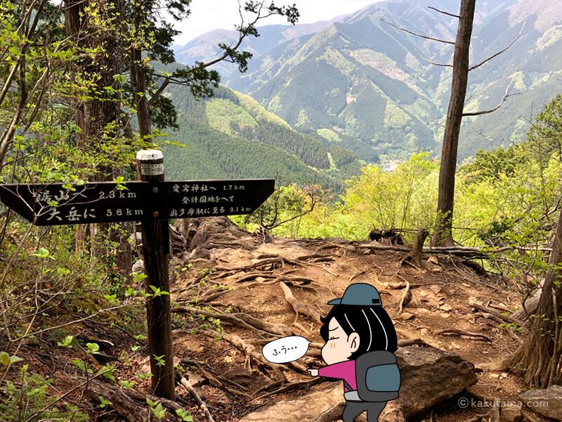 下山ルート2