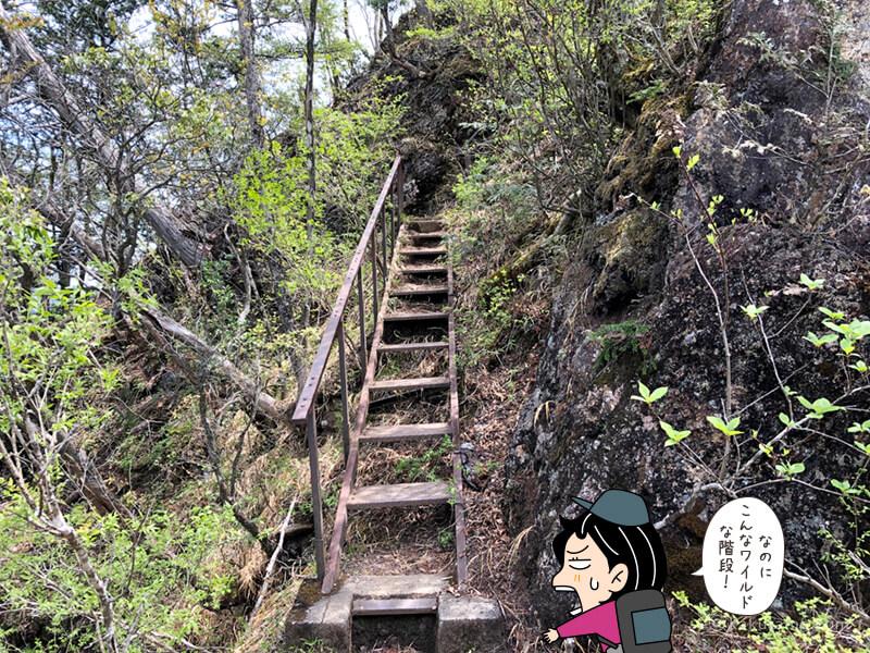 ワイルドな下山ルート2