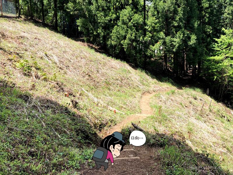 穏やかになった下山ルート2