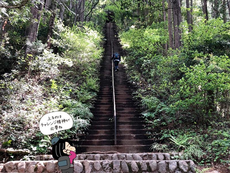 階段を見上げる