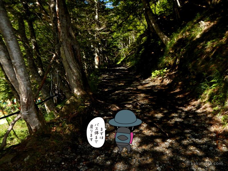 長衛小屋から北沢峠へ歩く