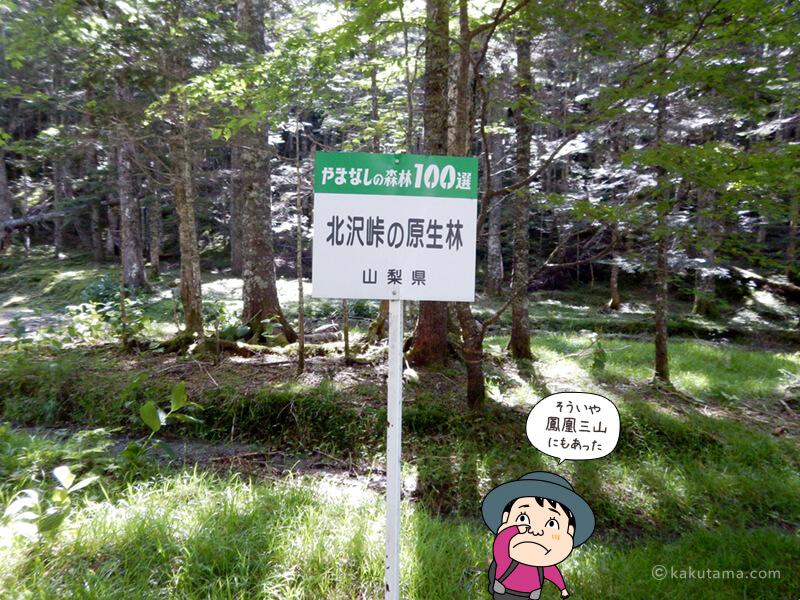 山梨百森林の看板