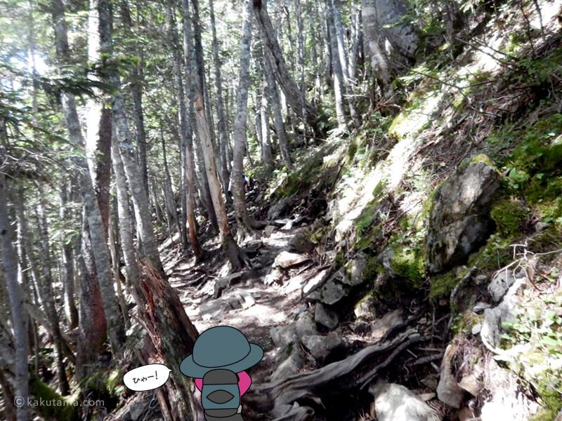 岩場の坂道を上る2
