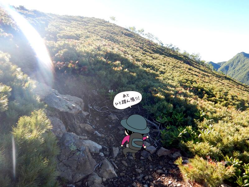 石と土の道を登る