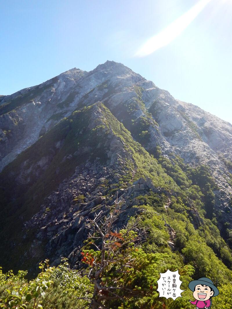 残るピークはは甲斐駒ケ岳