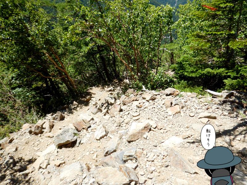 駒津峰から仙水峠へ向かって下山2