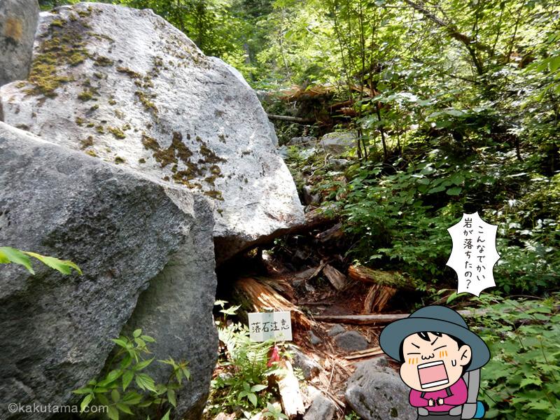 大きな落石