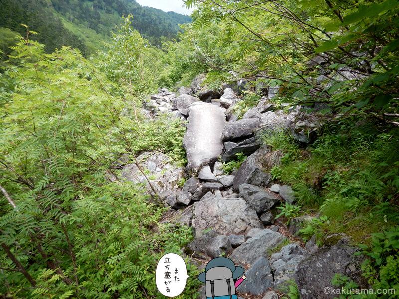 滝谷出合以後も樹林帯4