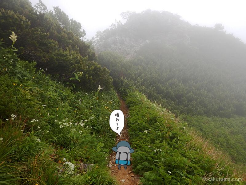 ヒュッテ西岳から先に進む