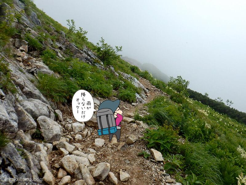 登山道を進む