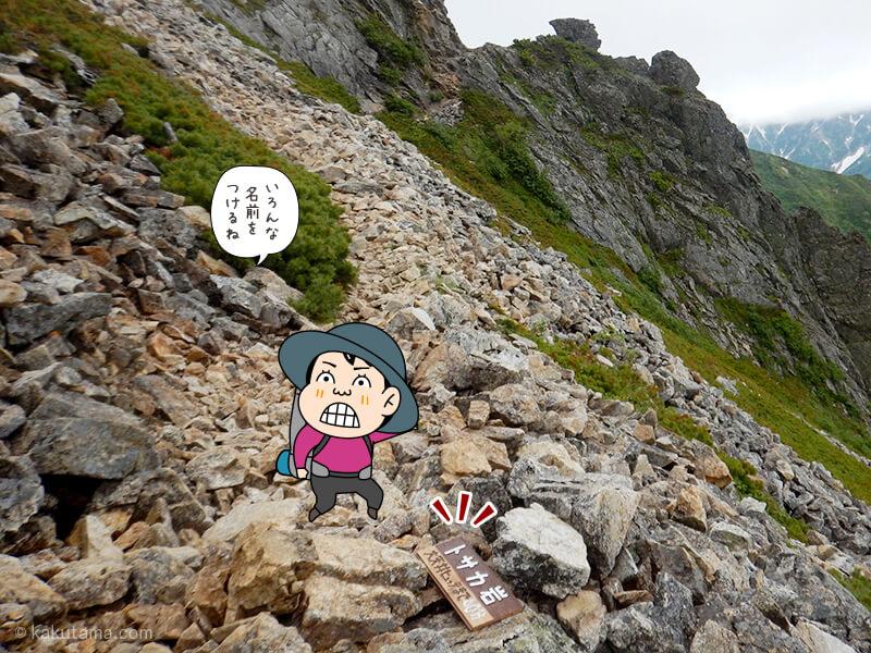 とさか岩の看板