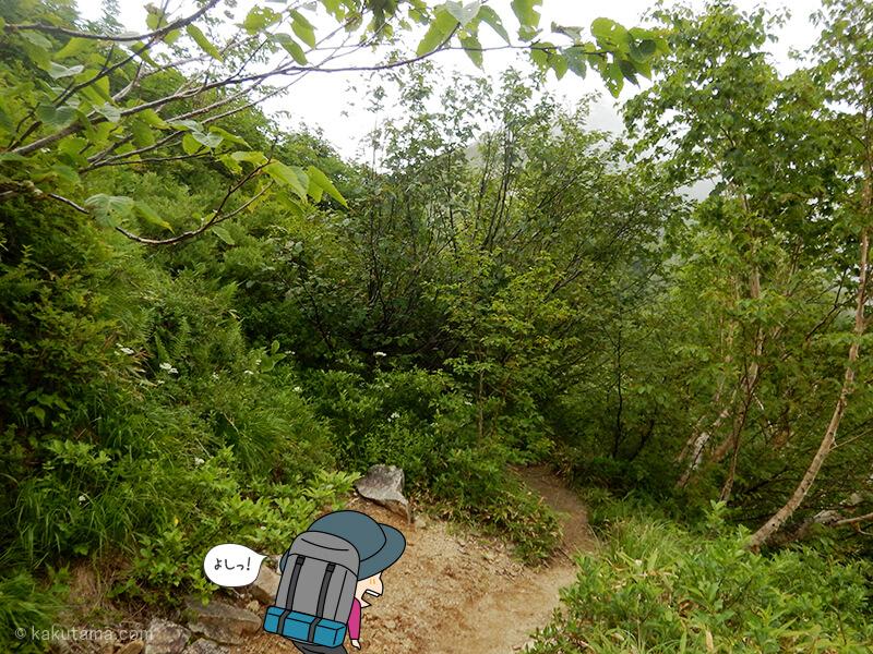 樹林帯を更に進む