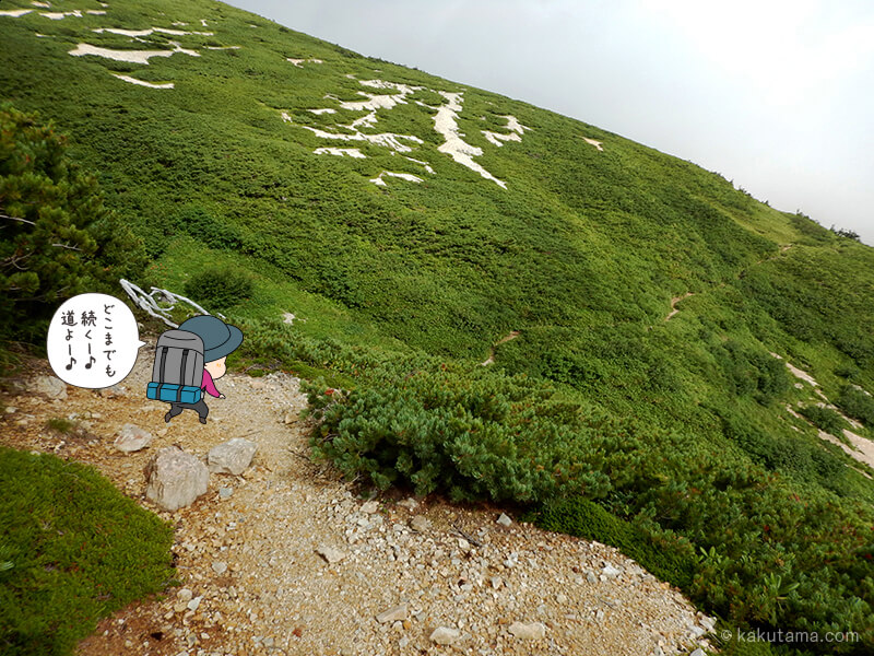 雪倉岳方面へ歩く3
