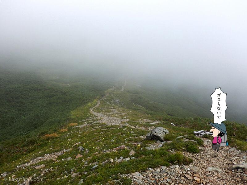 雪倉岳を目指して登る3