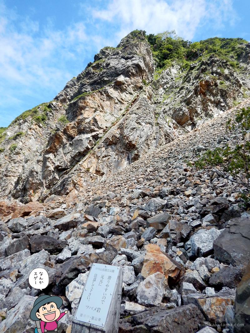 迫力のあるツバメ岩