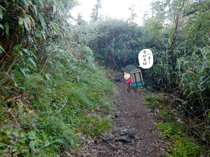 朝日岳を登る3