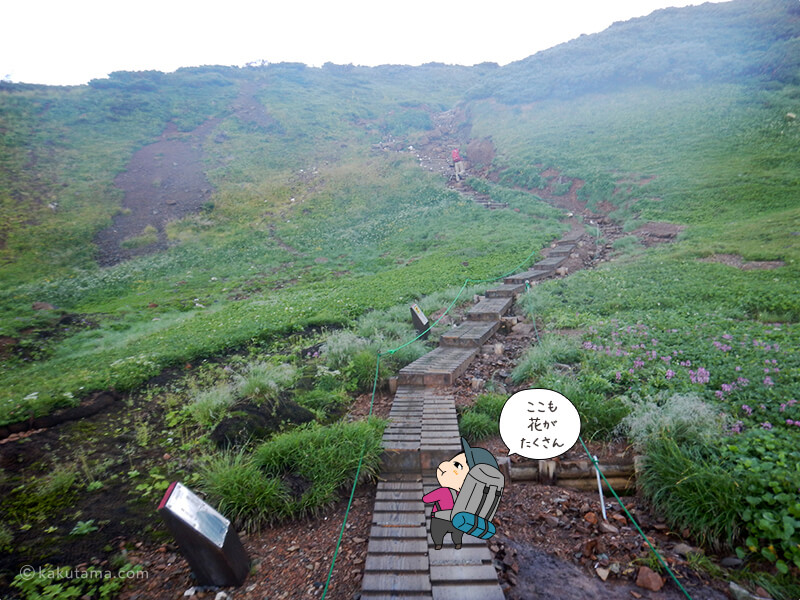 朝日岳を登る8
