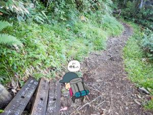 五輪の森を歩く2