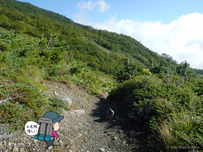 五輪高原を歩く