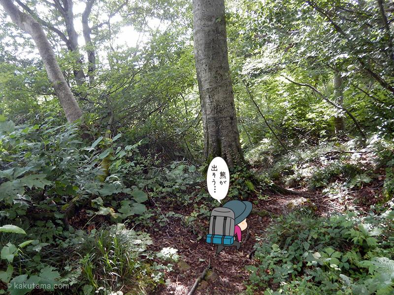 樹林帯をひたすら歩く3