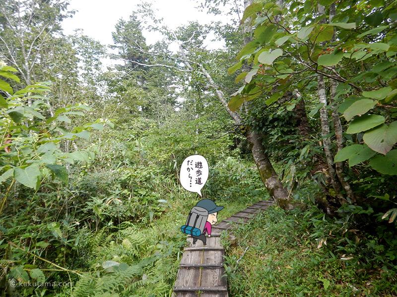 蓮華温泉へ向かって歩く