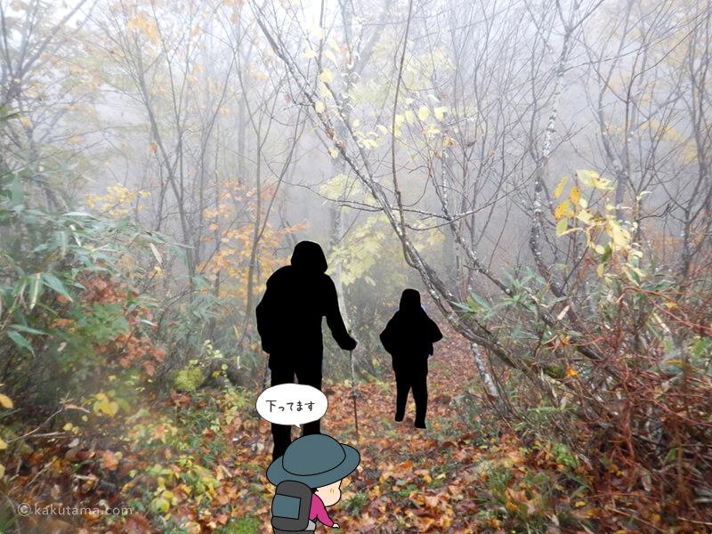 北野口登山口登山道を歩く3