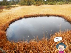 風吹天狗原の池塘