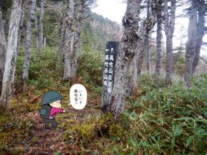 風吹岳への分岐