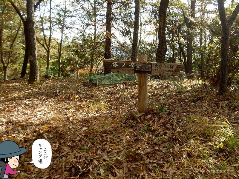 大倉高原山の家のキャンプ場