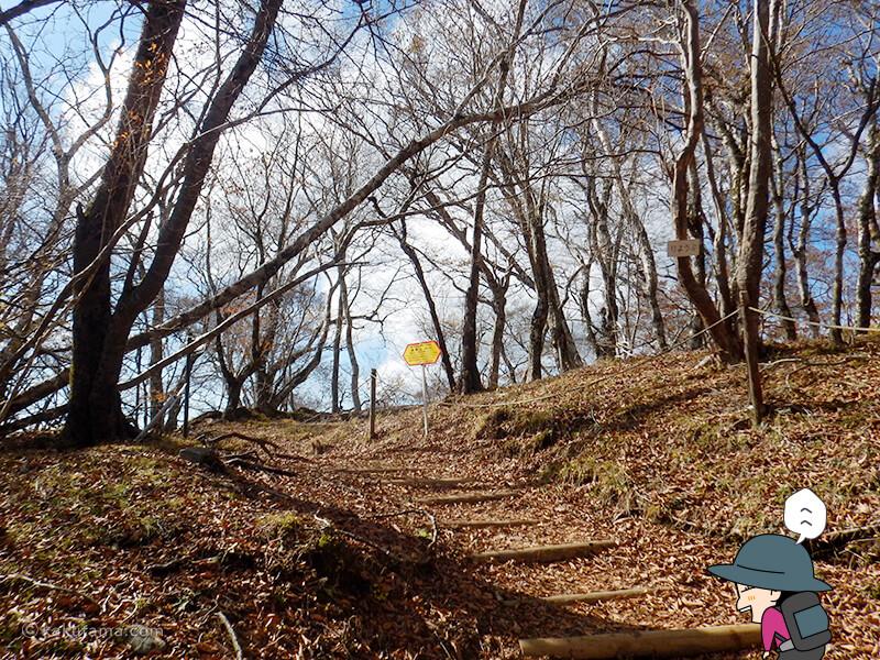 鍋割稜線を歩く2