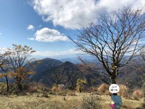 鍋割山山頂からの眺め