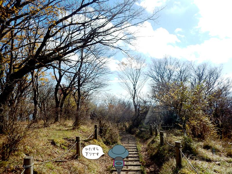 鍋割山から下山木道の道