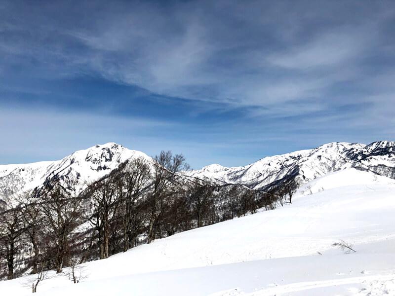 冬の大渚山