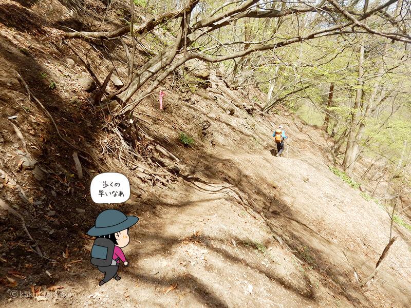 両神山清滝小屋から表参道コースを下る2