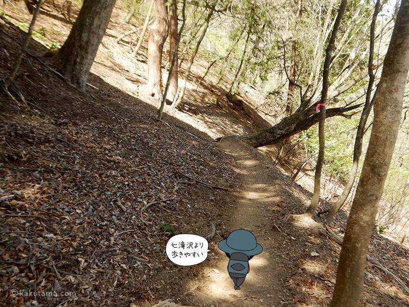 両神山清滝小屋から表参道コースを下る3