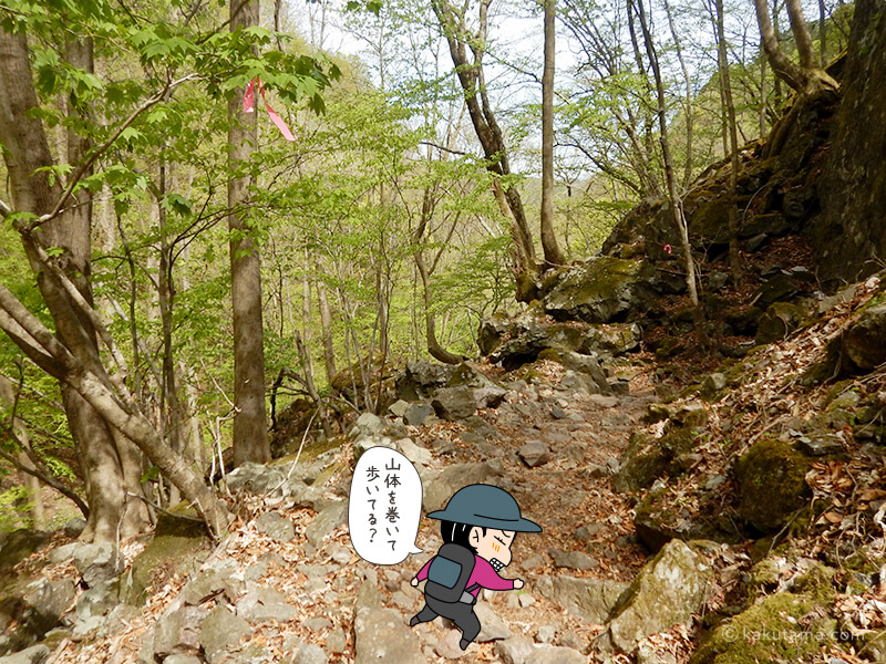 両神山表参道コースを下る