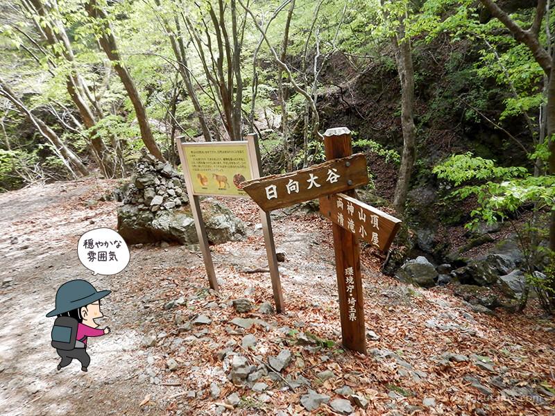 両神山表参道コースの広場